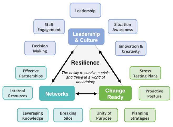 Organisationale Resilienz: Routinen und Praktiken für Unternehmen?