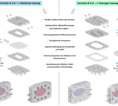Entwickeln einer Zellkultur-Kammer 3D-Bioreaktoren