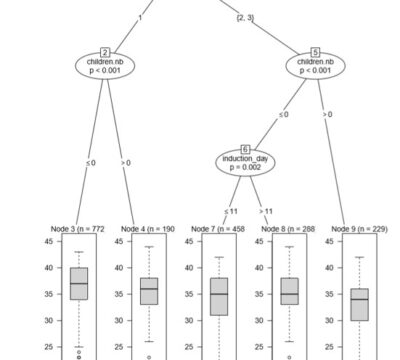 Statistische Modelle als Medizinprodukt in der Reproduk-tionsmedizin