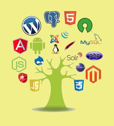 Application of open source software in an enterprise environment